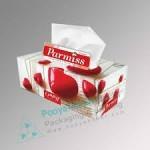 دستمال کاغذی جعبه ای پرمیس